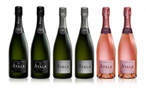 Ayala NV Champagne Collection Case Deal 6x75cl