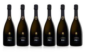 Bollinger PN VZ16 Champagne Case Deal 6 x 75cl