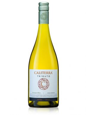 Caliterra Tributo Sauvignon Blanc 2013 White Wine Chile