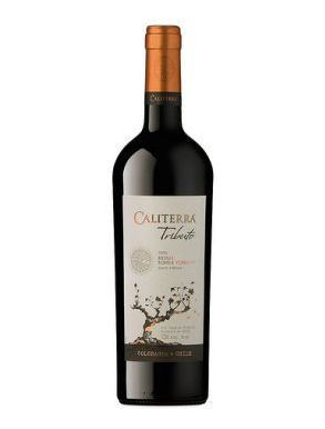Caliterra Tributo Shiraz Single Vineyard 2009 Red Wine