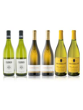 90+ White Wine Selection (6 x 75cl)